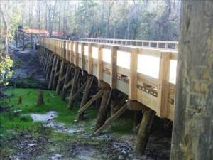 Timber Piles, Timber Piles india